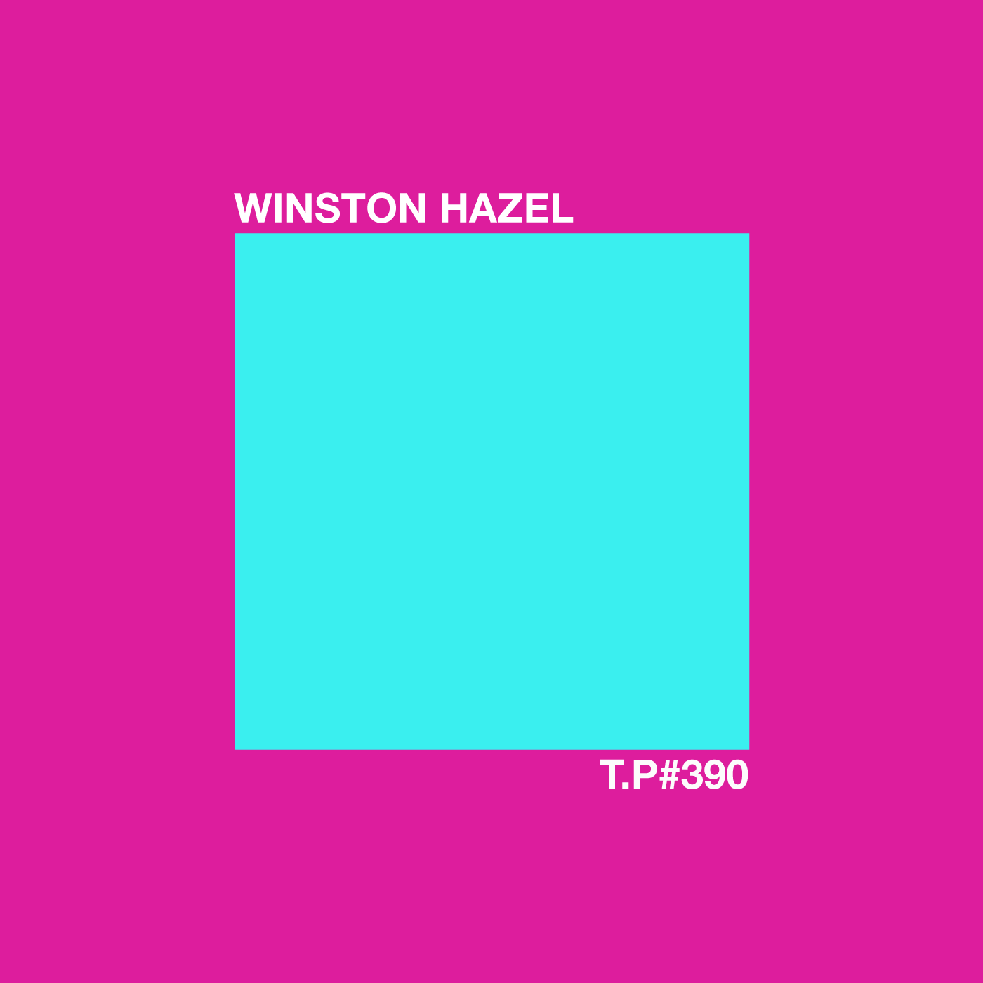 Winston Hazel, Forgemasters, Warp Records, Sheffield, Interview, Mix,  Parrott, Jive Turkey, Party,