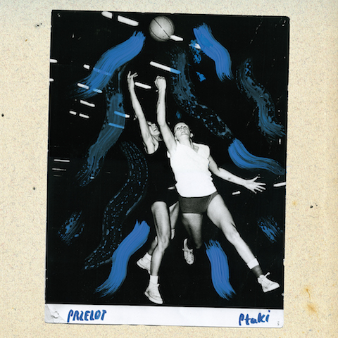 Ptaki - Przelot Cover Front copy
