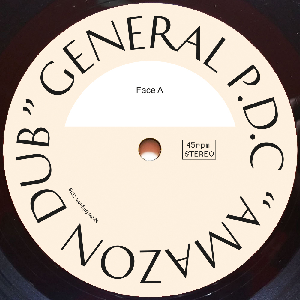 "General P.D.C, Amazon Dub, Beesmunt Soundsystem Remix, Vinyl, 10"""